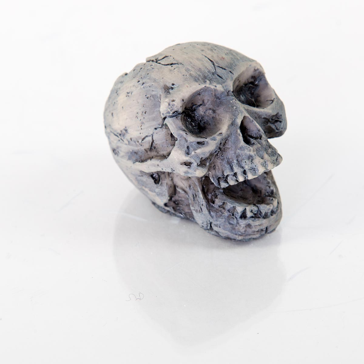 Decorative Human Skull 60132100