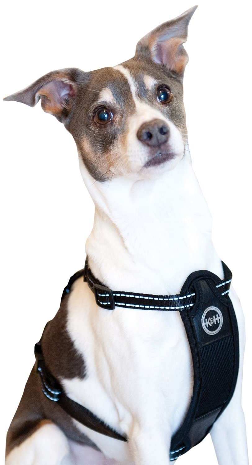 Travel Safety Pet Harness 24