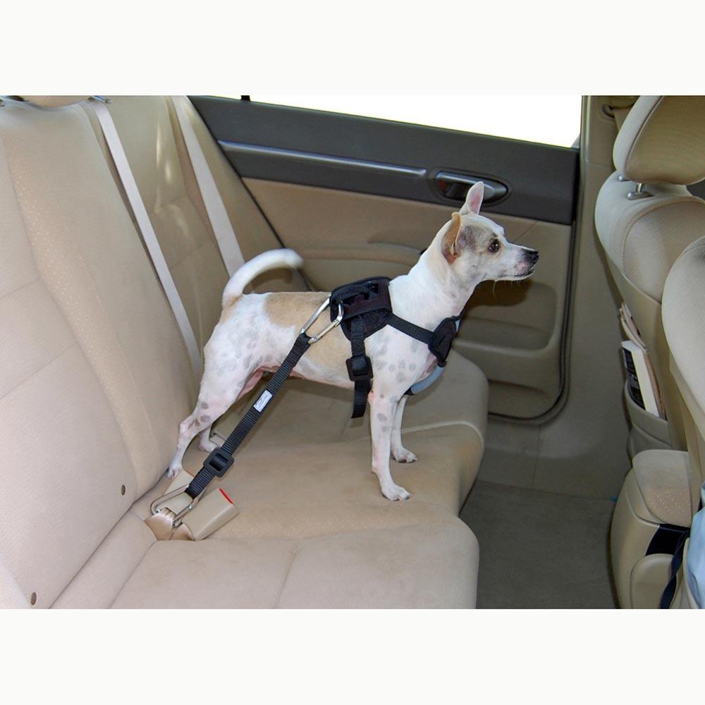 Dog Travel Harness 88230