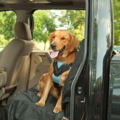 Dog Travel Harness 88231