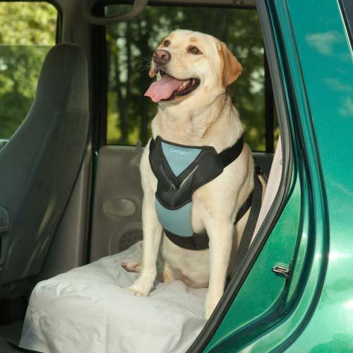 Dog Travel Harness 88232